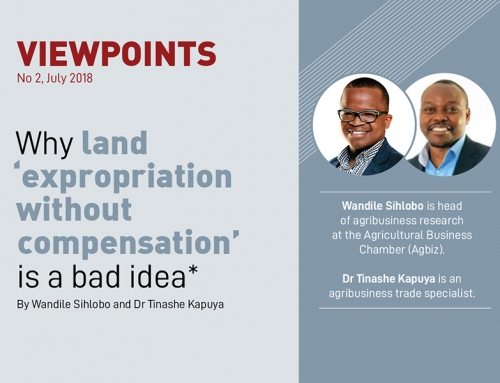 VIEWPOINTS | Why land expropriation without compensation is a bad idea